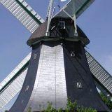 2005-06-01